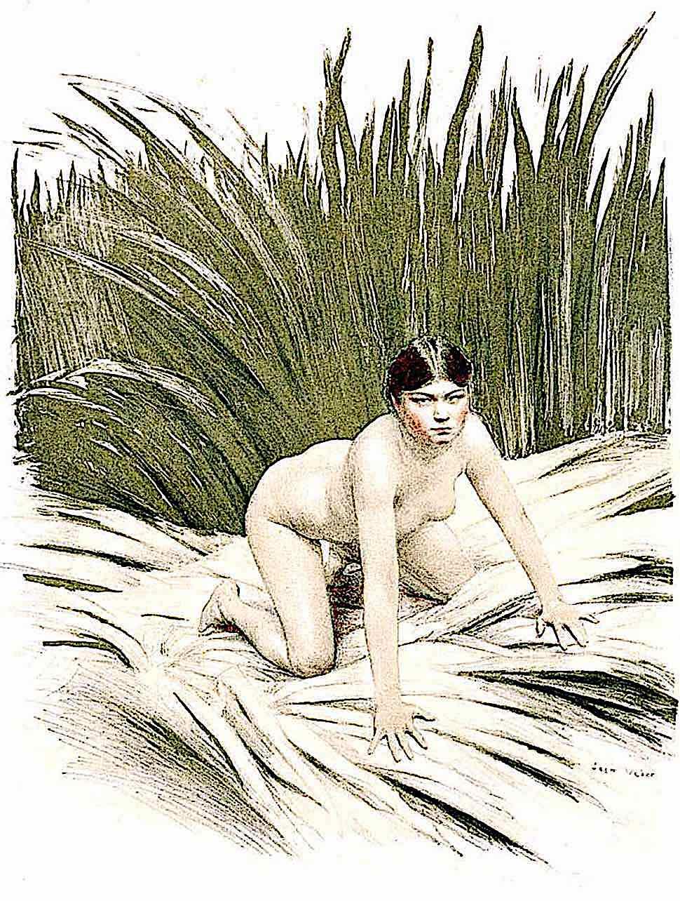 a Jean Veber 1896 nude woman in a swampy marsh