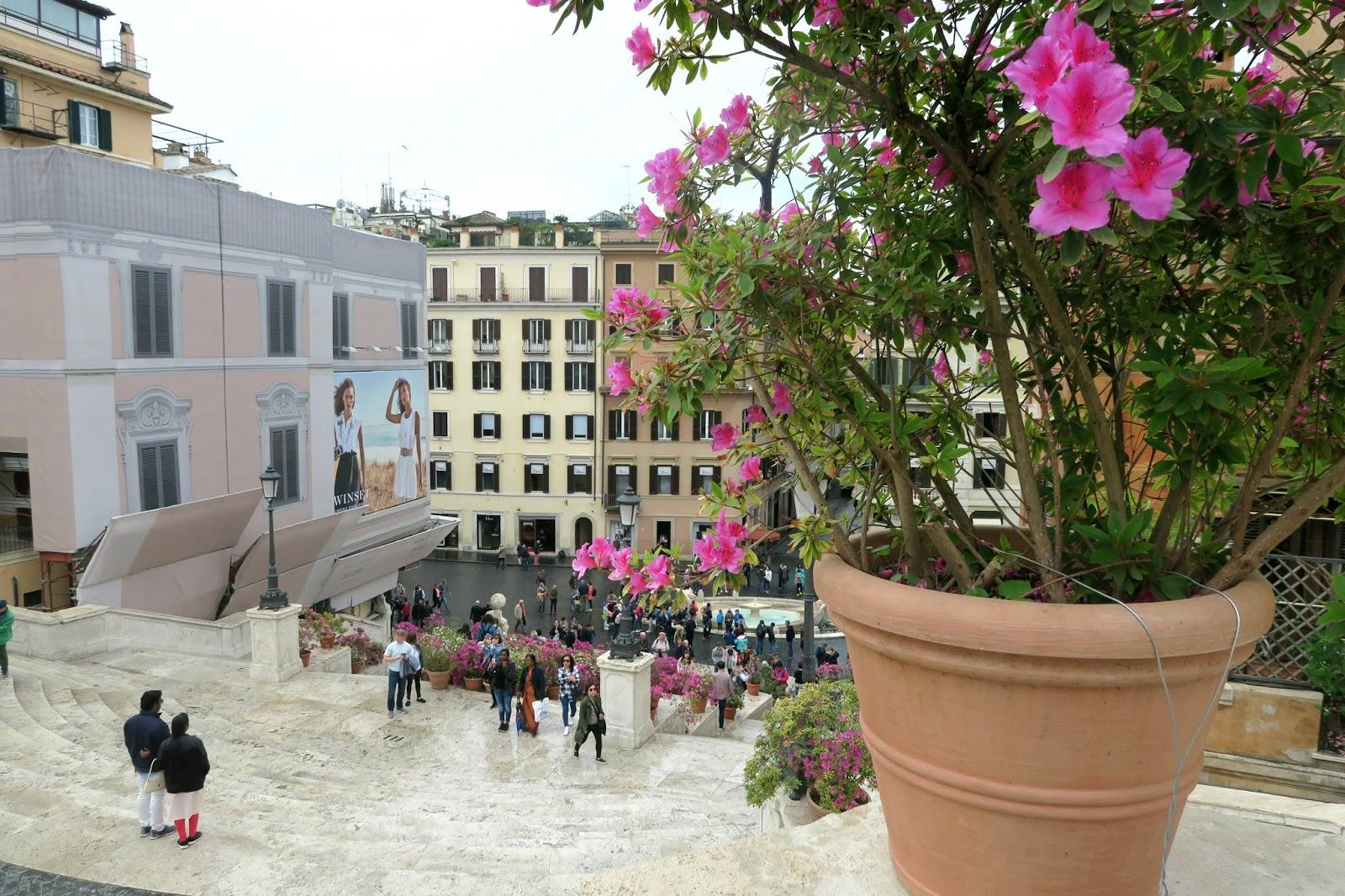 Rome Steps