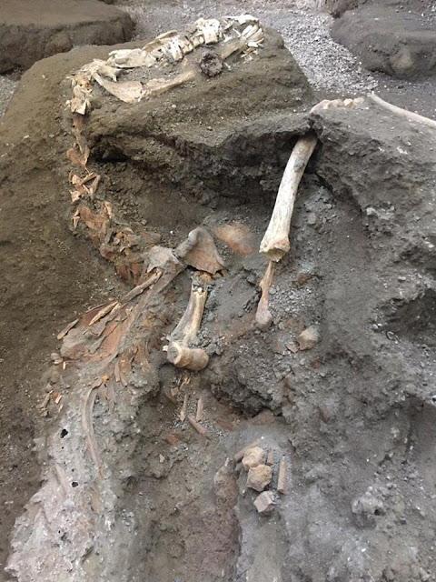 Εντυπωσιακή ανακάλυψη στην Πομπηία: Στο φως άλογο με τα χαλινάρια του
