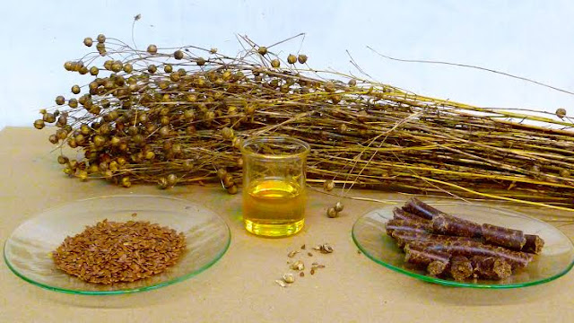 flaxseed oil in hindi