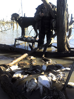 dead timber north texas duck hunt