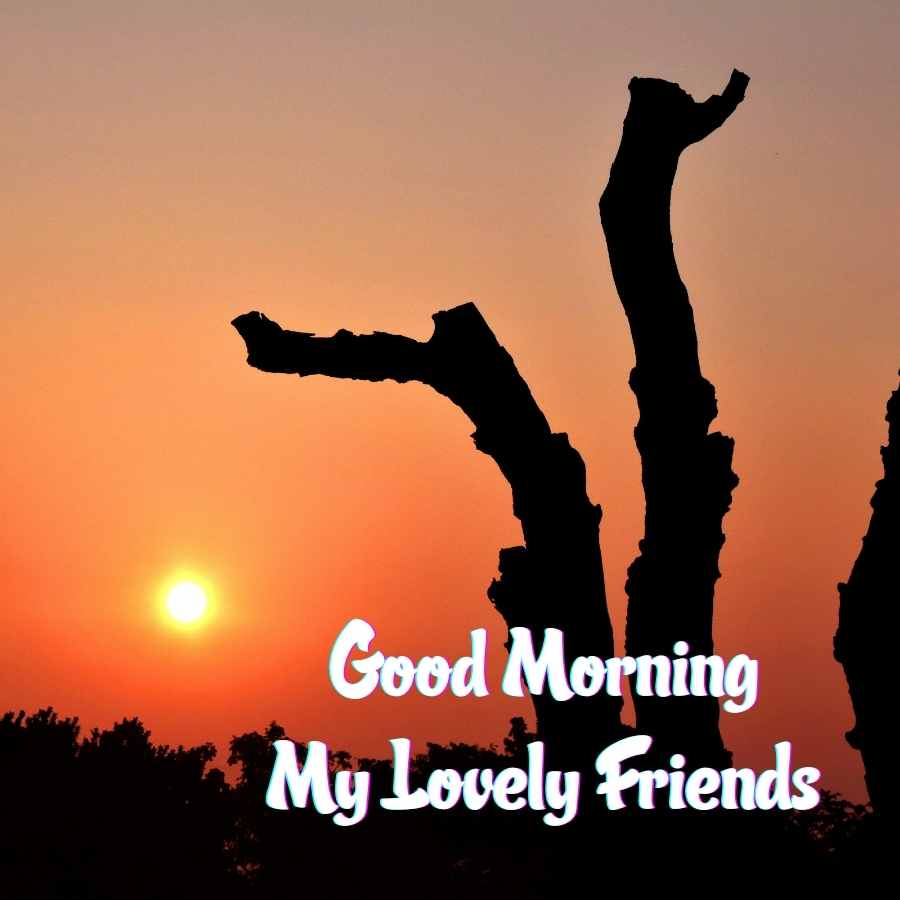 images good morning friends