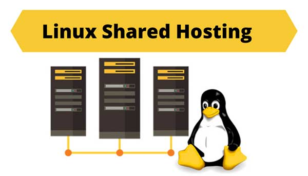 Everything About Linux Shared Hosting