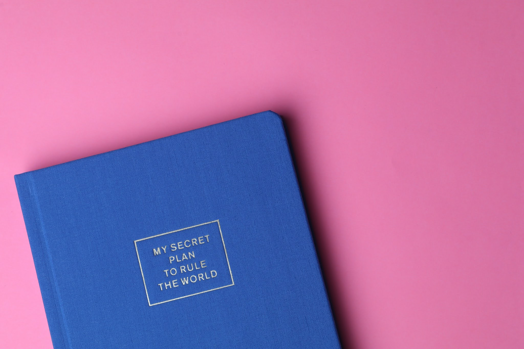 Journal with title 'my secret plan to rule the world' on cover