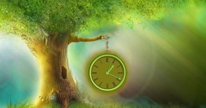 Вот в какое время суток есть возможность исполнить свое заветное желание!