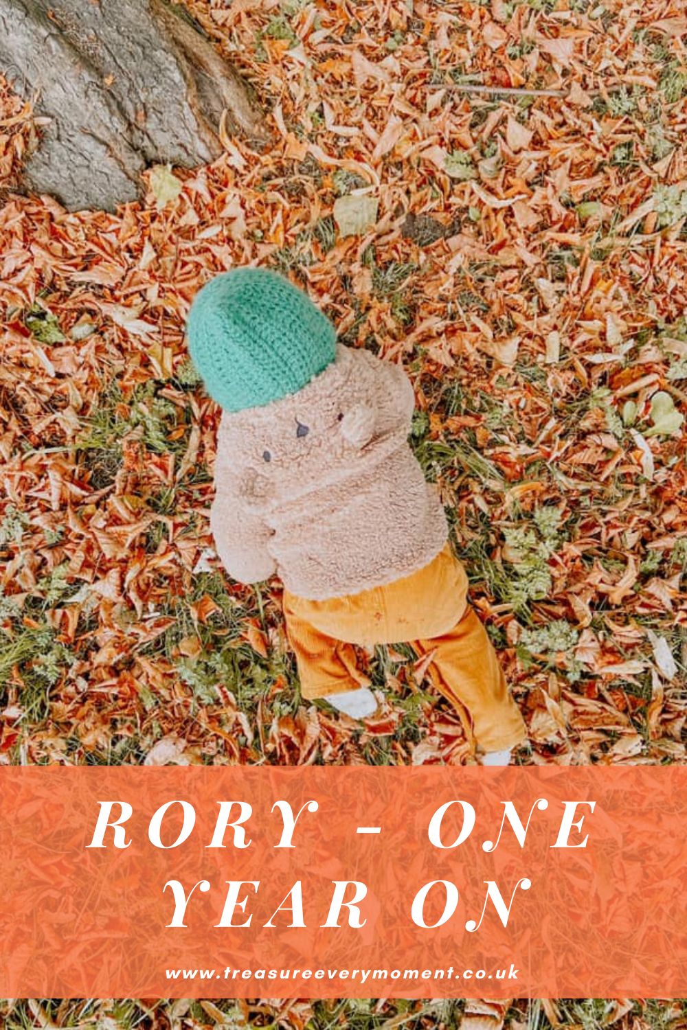 FAMILY: Rory - One Year On