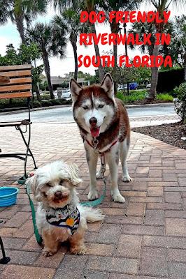 Dog Friendly, Jupiter Florida, Dog walking trail, dog friendly walks