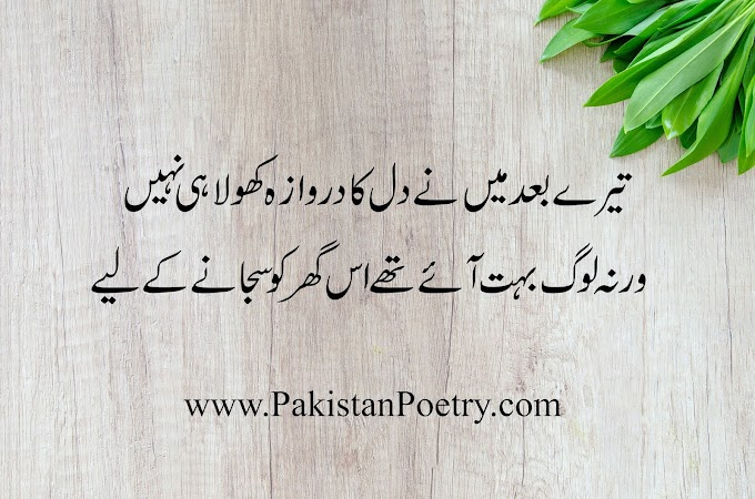 5 Best Images of Sad Poetry in Urdu and English
