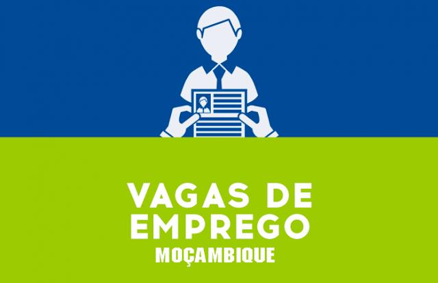 Vagas De Emprego Abertas Nesta Quarta-feira 24 De Fevereiro De 2021: Clica para candidatar-se