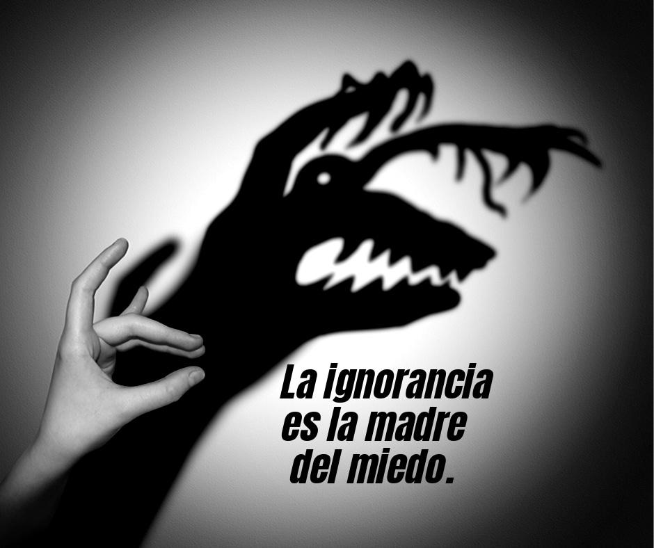 Frases De La Vida 13102019
