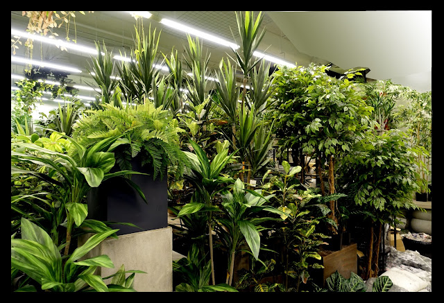 Finest quality artificial plants that look so realistic and natural