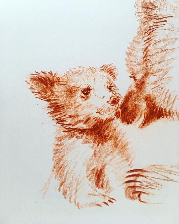 10-Little-bear-Farbe-Und-Fabeln-www-designstack-co