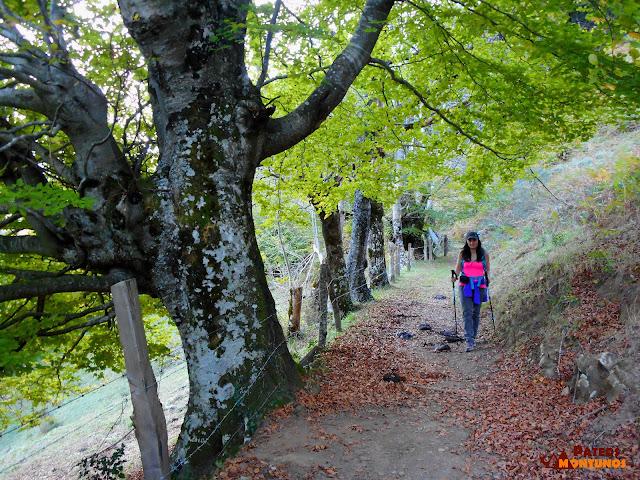 Ruta del Tiatordos: Camino.