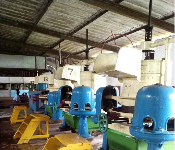 Ortho tea machineries