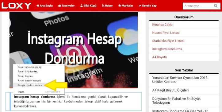 webde bulunan bir resmi görsel arama ile aramak
