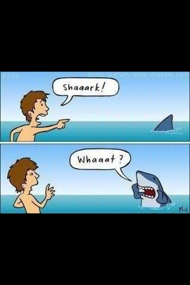 humor cheesy stupid boyfriend ex funny comic imgur thought sharks weird meme shark gets cute comments extremely stuff frightening another