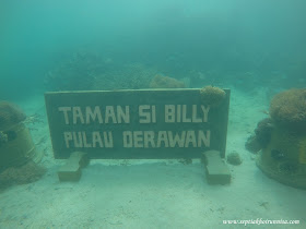 Taman si billy merupakan habitat terumbu karang dan rumah bagi ikan warna warni