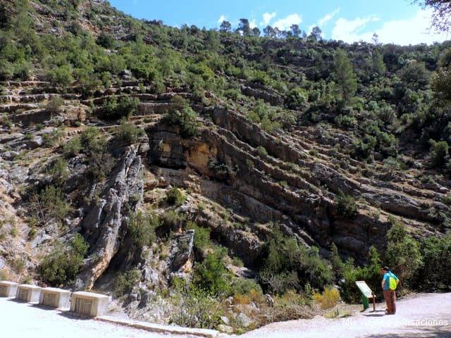 Pliegues en la roca, nacimiento del río Borosa, Sierra de Cazorla, Andalucía