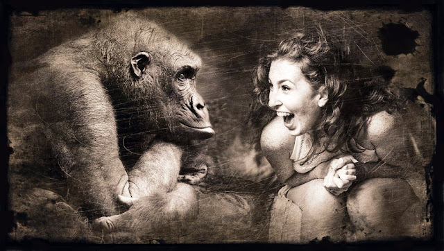 Mimpi Di Gigit Monyet