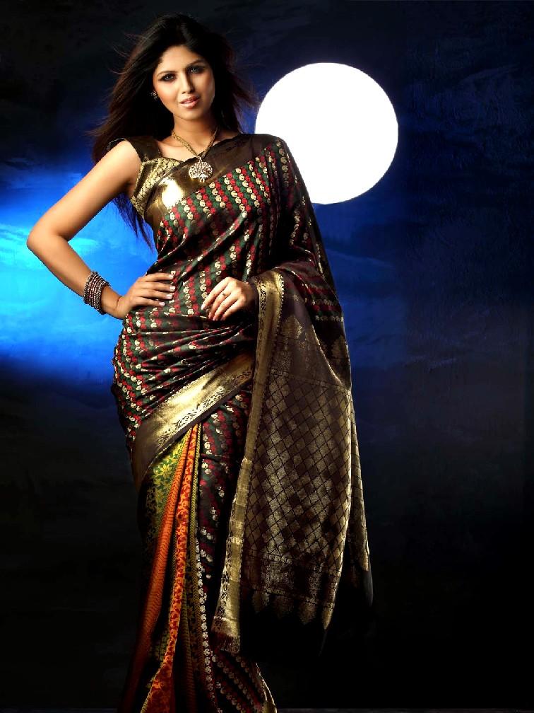Saree World: Party Wear Saree Collection 2013