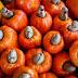 Exportações de castanha de caju caem 1,1%; Ceará lidera no País