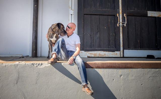Kommunikation zwischen Hund und Halter