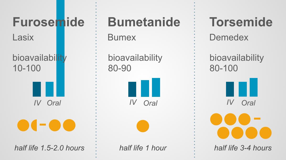 30 furosemide.doc - So Here Are My Loop And Thiazide Diuretic Infographics Enjoy