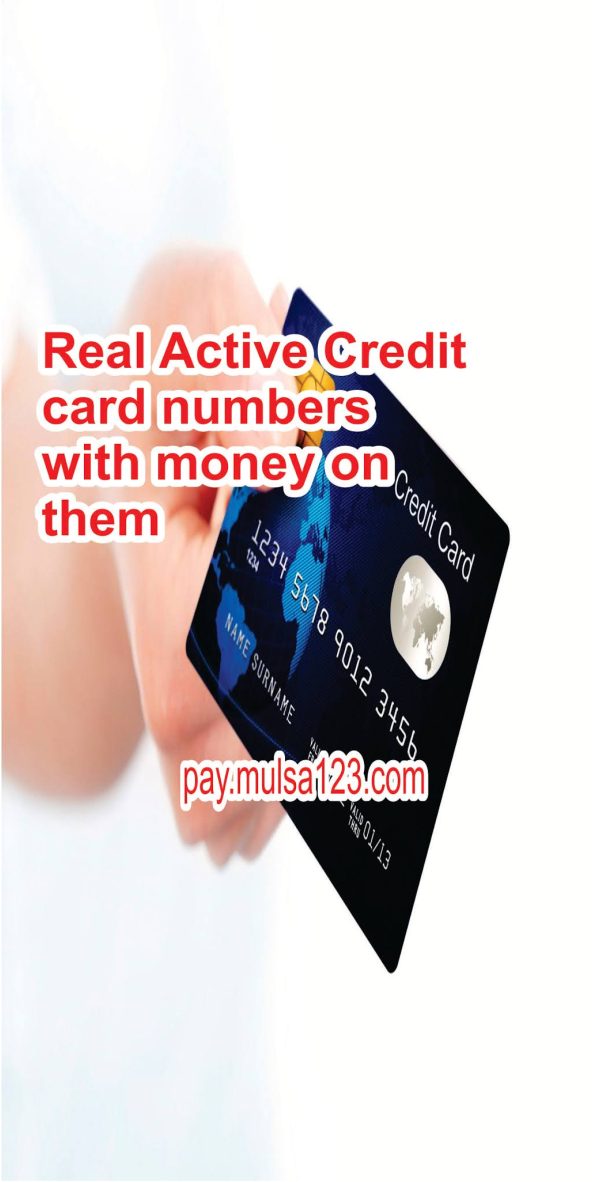 Real Active Credit card numbers with money on them