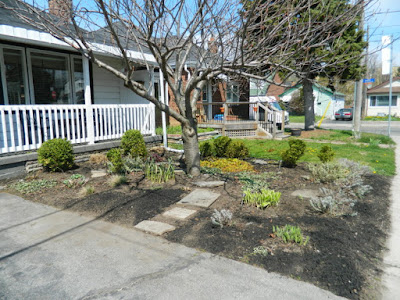 Birch Cliff Toronto spring garden clean up after by Paul Jung Gardening Services