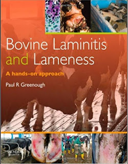 A Hands on Approachs bovine laminitis and lameness