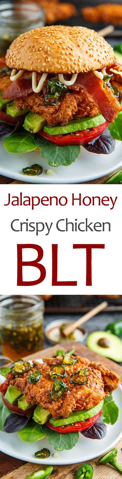 Jalapeno Honey Crispy Fried Chicken BLT
