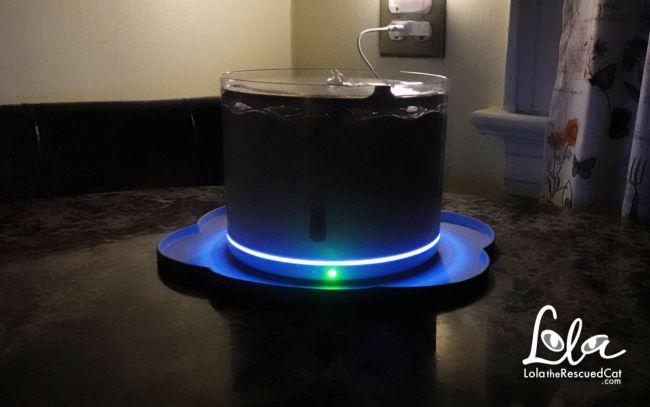 Petlibro Automatic Pet Water Fountain night light