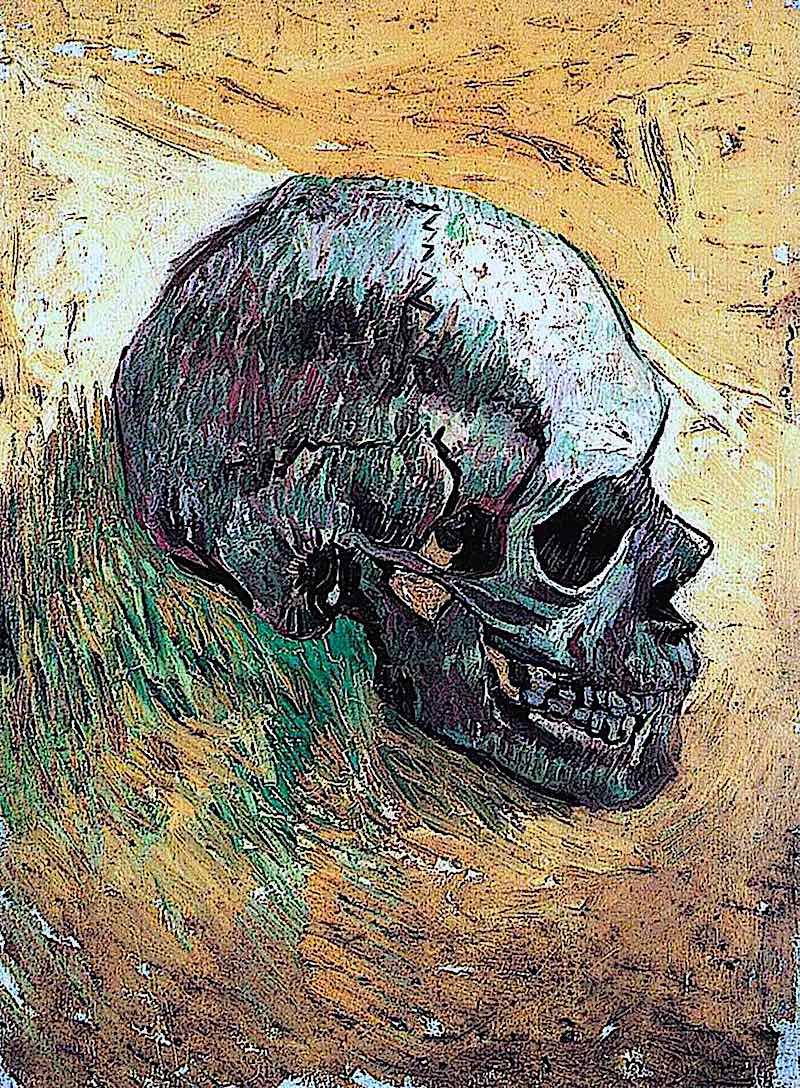 a Vincent van Gogh painting of a human skull in profile