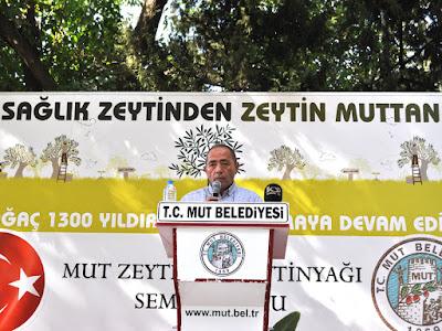 Gürsel Aydın: ''Ayvalık Zeytin Türü Mut'a Ait'' dedi