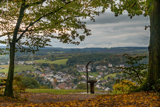 Wildwiesenweg – Eitorf | Wandern in der Naturregion-Sieg | Erlebniswege Sieg 14