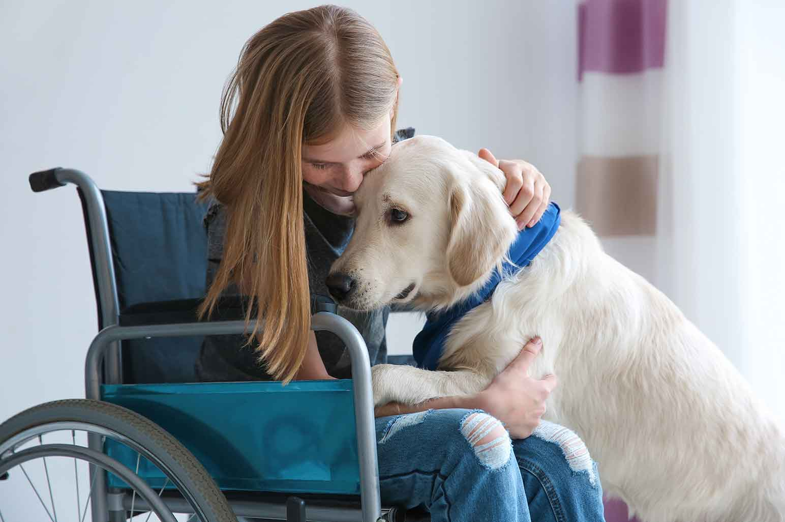 How Service Dogs Help Children Cope with Anxiety