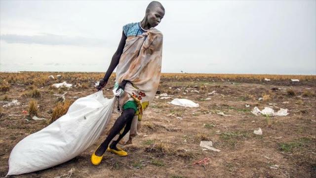 """""""Hay que adaptarse al cambio climático para solucionar el hambre"""""""