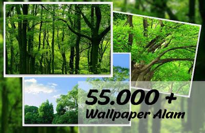 Wallpaper Alam Lebih dari 5000+