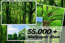 Siap Download 55.000+ Wallpaper Gambar Alam Resolusi Tinggi