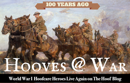 Hooves@War