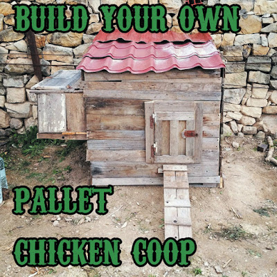 How To Make A Chicken Coop Out Of Pallets