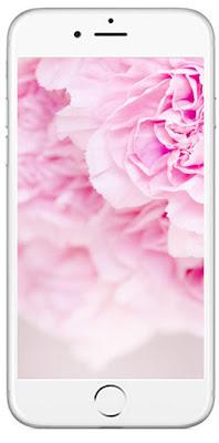Tapeta w różowe kwiaty