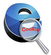 ماهو ملف الكوكيز Cookies الخاص بمواقع الإنترنت وماوظيفته ؟ تعرف عليها