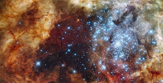 Hubble Space Telescope image of the young massive star cluster R136 in the 30 Doradus star forming region in the Large Magellanic Cloud. The core of this cluster contains several very massive stars with masses of several 100 times the mass of the Sun, which could have formed by stellar collisions. Credit: NASA/ESA