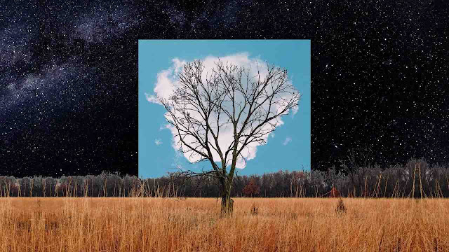 Bloom Innocent est le second extrait de 'album de Fink, prévu le 25/10.