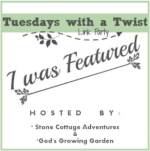Scratch Made Food! & DIY Homemade Household was featured at Tuesdays with a Twist link-up!