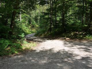 Beginn östlicher Römerstraßen-Abstieg zur Isar südlich von Grünwald nahe Straßlach-Dingharting