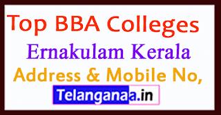 Top BBA Colleges in Ernakulam Kerala