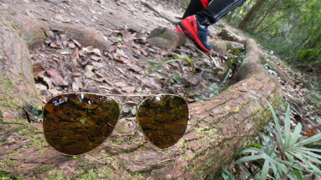 行山太陽眼鏡茶色偏光鏡 Ray Ban RB3025 Polarized