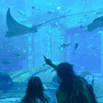 El acuario de Atlantis China